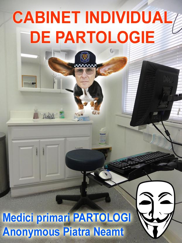 cabinet-partologie